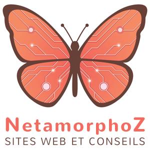 Logo NetamorphoZ format carré sur fond blanc
