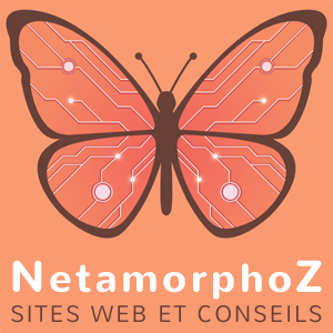 Logo NetamorphoZ format carré sur fond orange